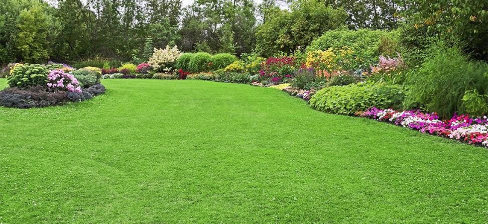 gestione aree verdi