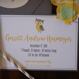 Owl Birth Announcement