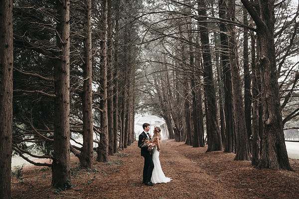 Blue mountains elopement and wedding photographer. Couple standing in a pine forest.