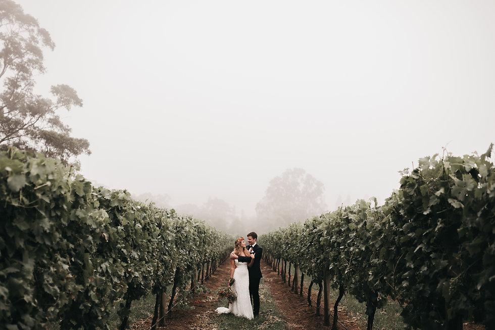 Centennial Vineyards Wedding Shot by Wedding and Family Photographer Matt Ashton Photography