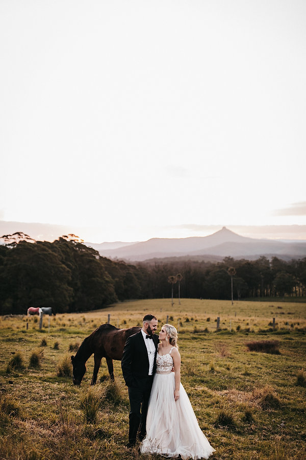 South Coast wedding photographer couple standing in a padddock surrounded by horses shot by Matt Ashton Photography South Coast & Southern Highlands Wedding photographer