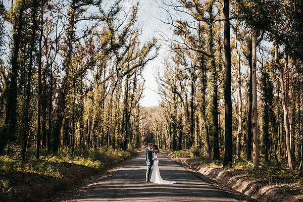 Pretty Beach on the South Coast. Shot by wedding and elopement photogrpaher Matt Ashton Photography. Couple standing in the middle of a road which was burnt by Bush fires on the south coast in Summer