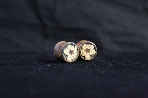 Zebrawood Peony Plugs