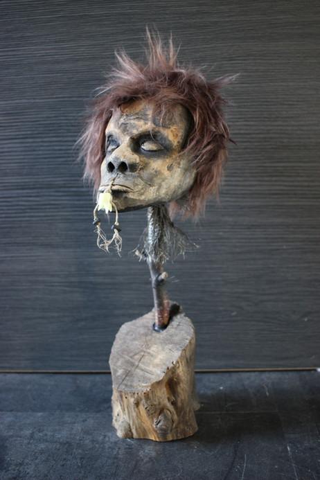 Sculpture tête réduite bois / Jivaroan tribe sculpture