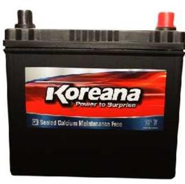 koreana_bat.jpg
