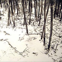 Large Bamboo