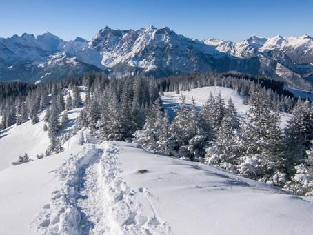 Die Zeitqualität der Monate: Jänner - Visionen und Neubeginn