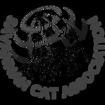 logo-sca.png.webp