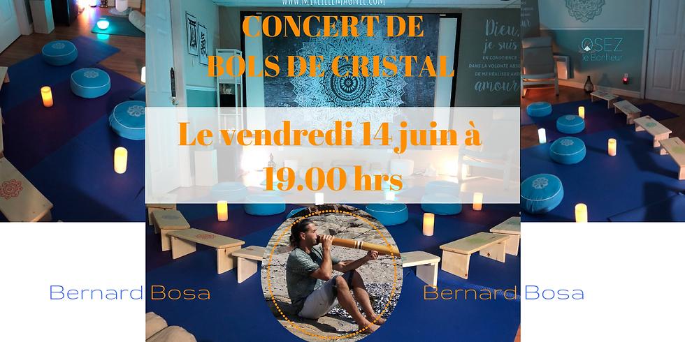 Soirée Vibratoire du Cristal et Didgéridoo avec Bernard Bosa