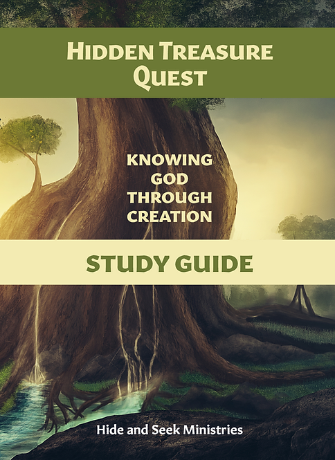 Hidden Treasure Quest Study Guide (Book One)