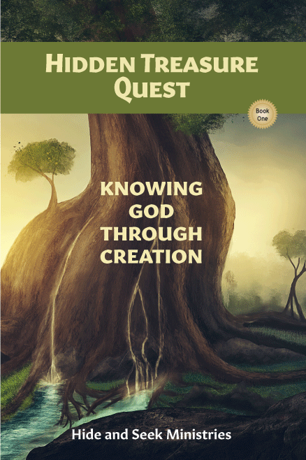 Hidden Treasure Quest: Knowing God Through Creation (Book One)