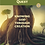 Thumbnail: Hidden Treasure Quest: Knowing God Through Creation (Book One)