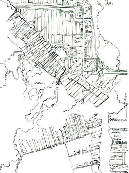 Coastal Plantations, Guyana, 2020