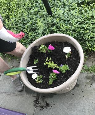 Thank you Gardeners!