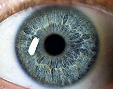 Olhos ajudam diagnosticar doenças
