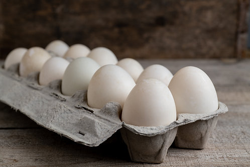Duck Eggs