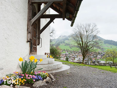 Chateau dOex Switzerland-2