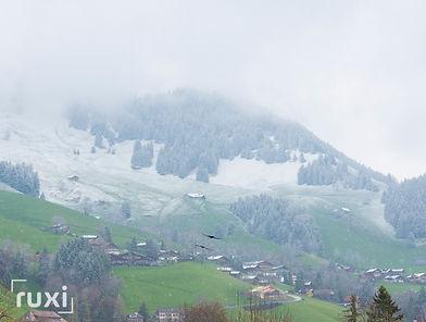 Chateau dOex Switzerland-15