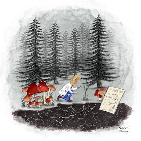 Suzanne Simard Ecologist Article Illustration