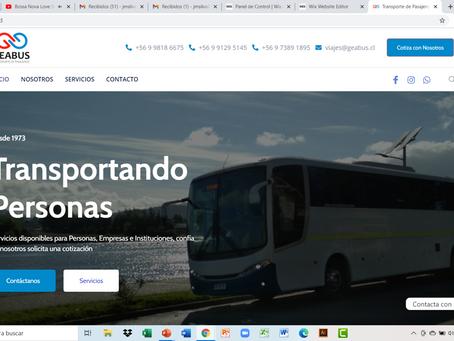 Sitio Web GEABUS