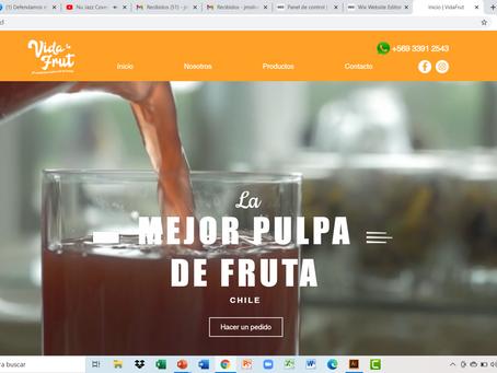Sitio Web VIDAFRUT, la mejor Pulpa de Fruta