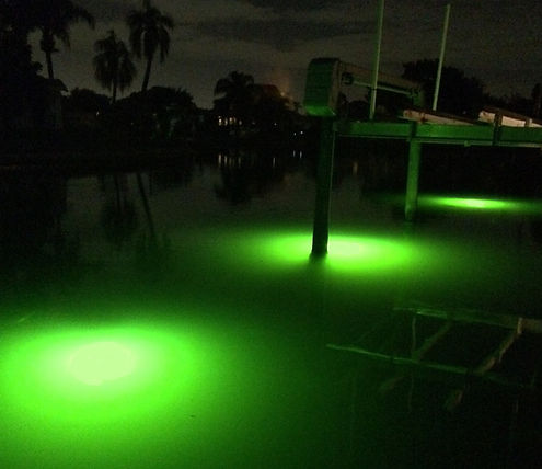 Fish Attracting Dock Light