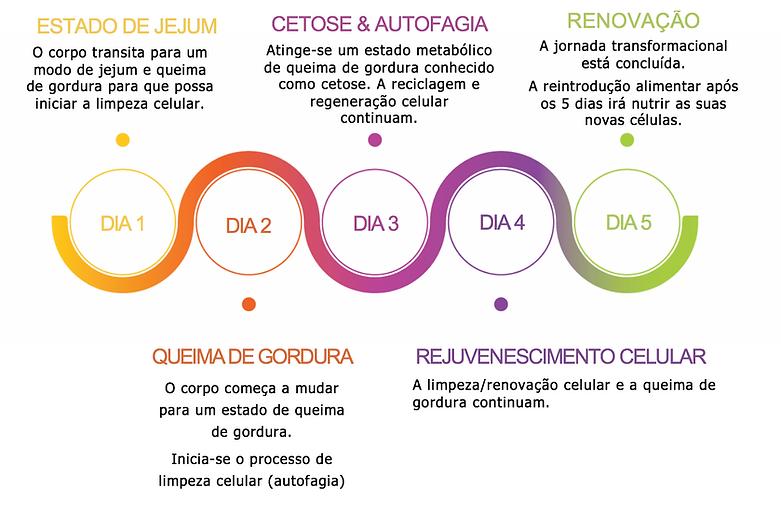 PROLON jejum intermitente portugal.png