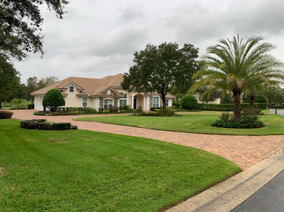 Pavers and Landscaping