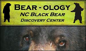 Logo Bear-Ology cropped.jpg