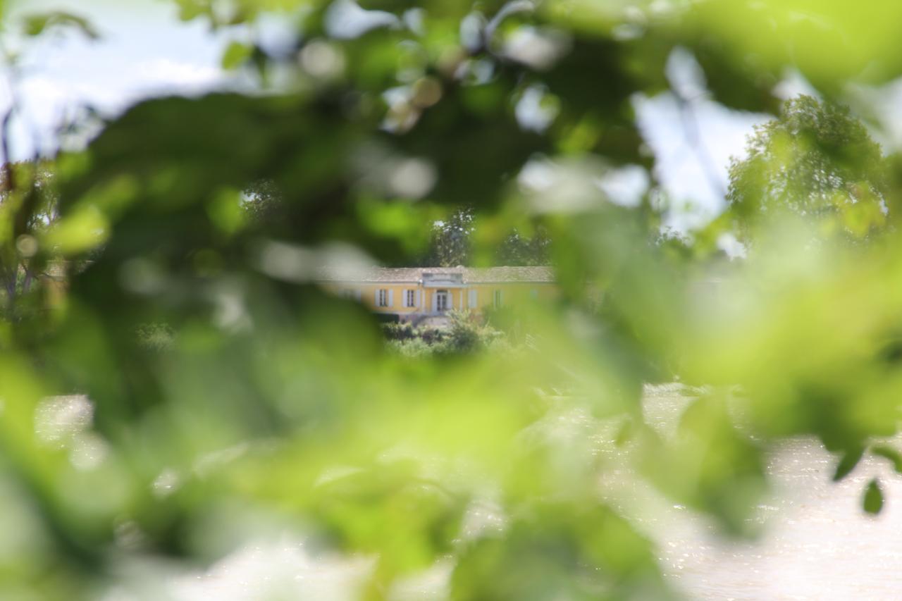 2017-château-feuillage2-positivartphotosbydenysbeaumatin