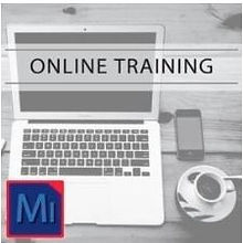 Michigan - Online Notary Class.JPG
