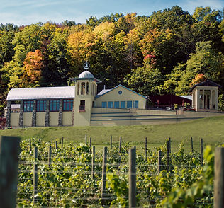 Winery early fall - STU GALLAGHER.jpg