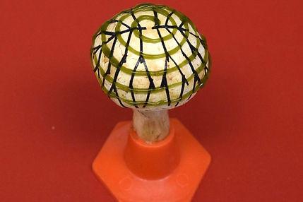 champignon-bionique.jpg