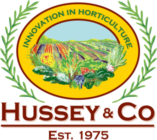 Hussey.png