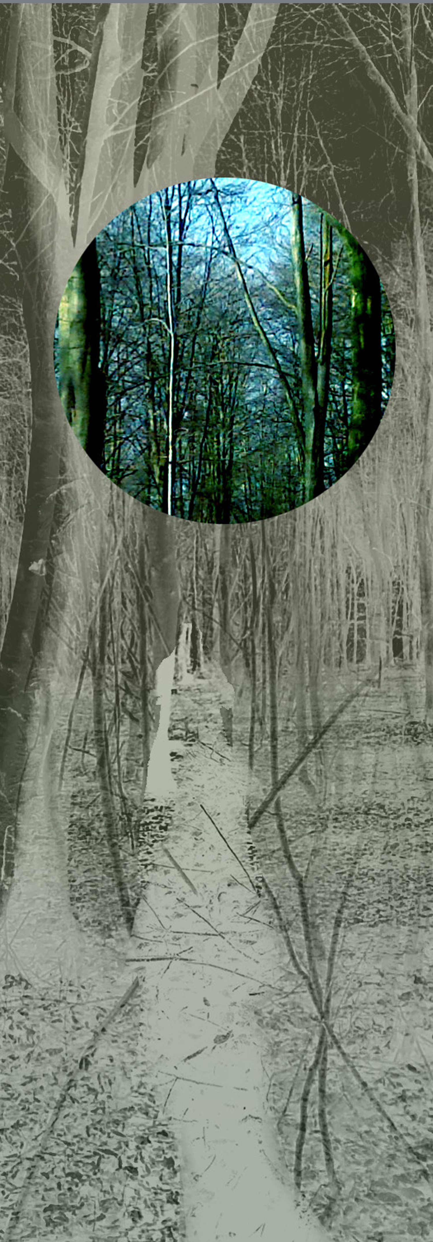 January Woods II Digital Print