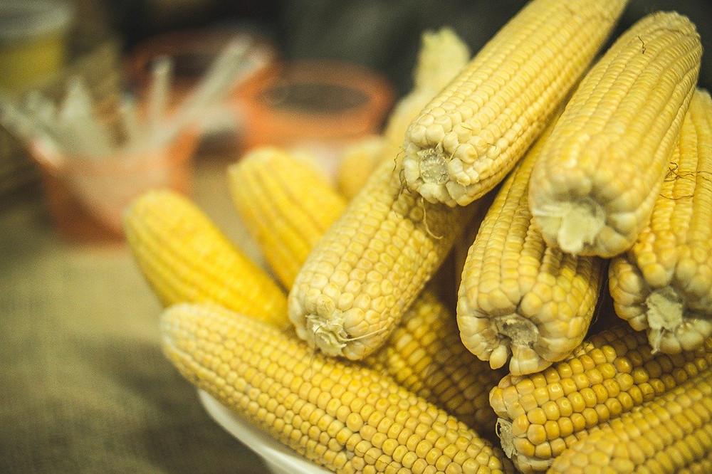 Milho e comida caipira