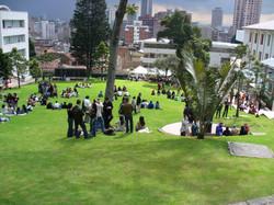 Universidad de los Andes - Colombia