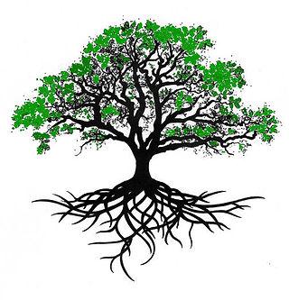 color tree.jpg