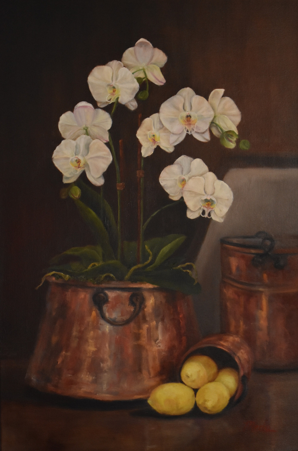 Copper Pots and Orchids