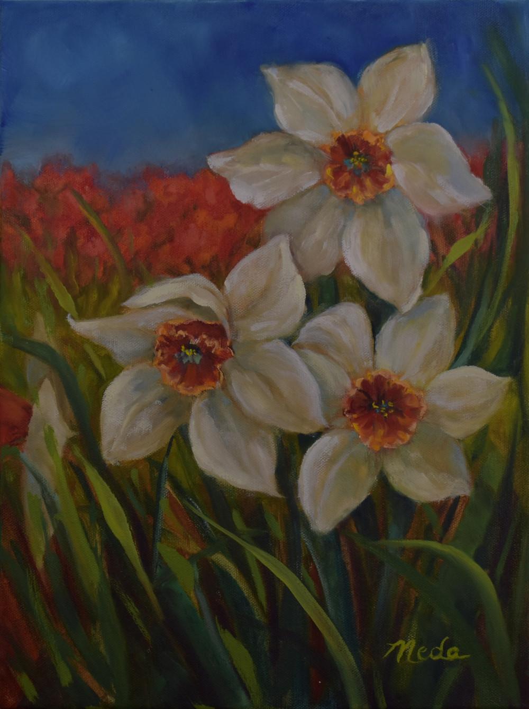 Daffodils in The Wind
