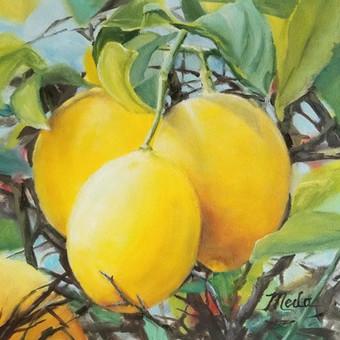Lemons in Galilee