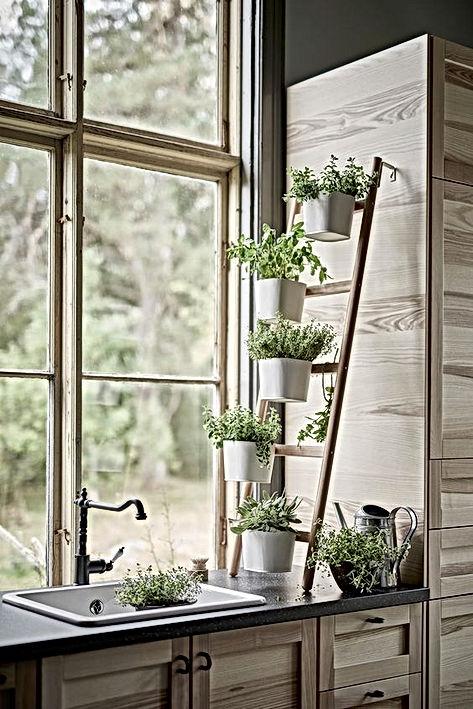 Des idées Déco pour mettre en valeur vos plantes intérieures ...
