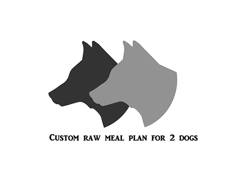 Custom Meal Plan For 2 Adult Dogs