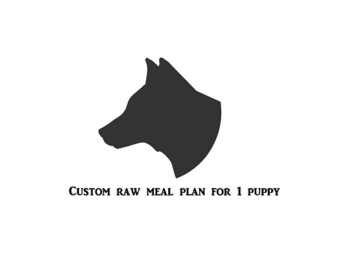 Custom Meal Plan for 1 Puppy (2-15 months old)