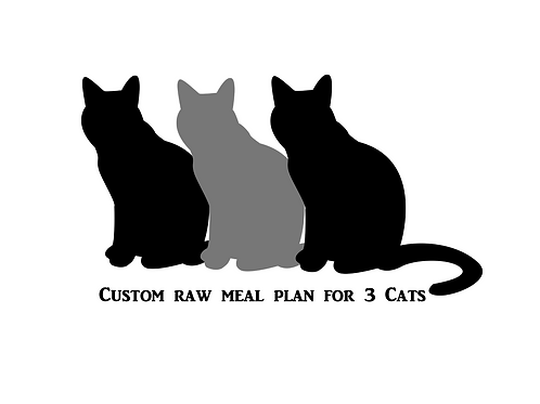 Custom Raw Meal Plan For 3 Cats