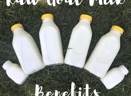 Raw Goat Milk Benefits
