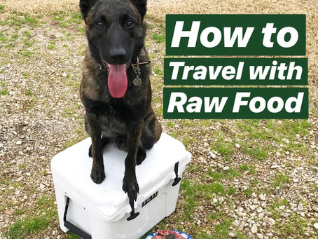 How to Travel with Raw Pet Food