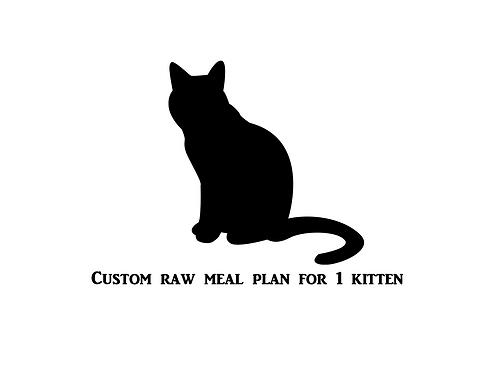Custom Raw Meal Plan for 1 Kitten