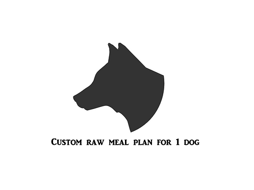 Custom Meal Plan For 1 Adult Dog