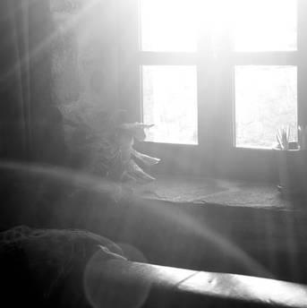 Lumière dans la maison 10
